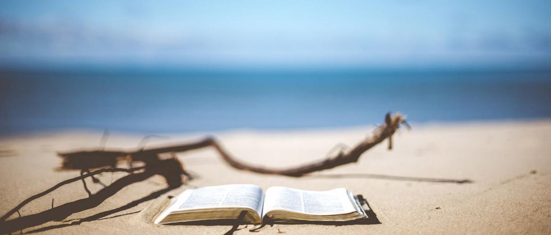 Conseils de lecture pour passer un bel été