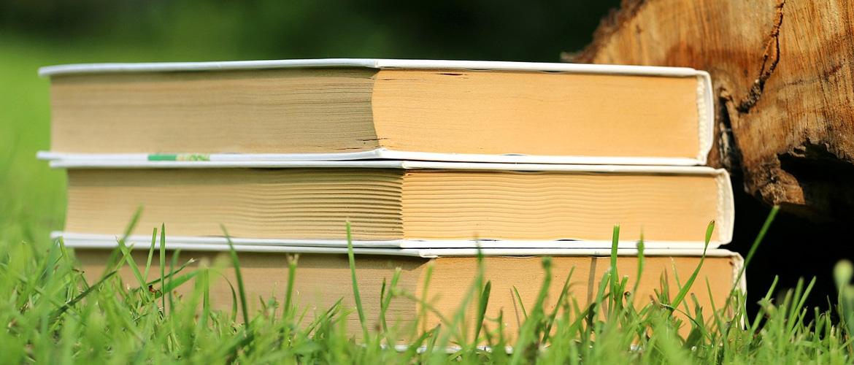 Les livres partent en voyage !