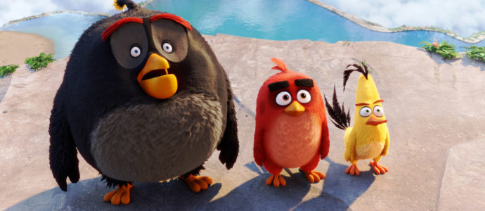 Angry Birds: Netflix orders a new animated series