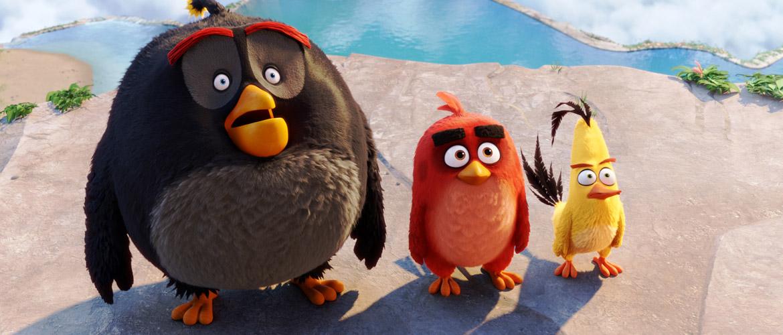 Angry Birds : Netflix commande une série d'animation