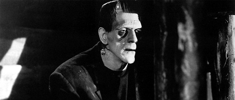 A museum in honor of Frankenstein