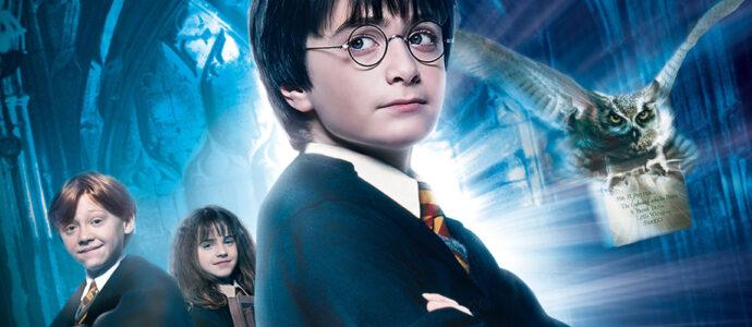 Un gîte consacré à l'univers d'Harry Potter
