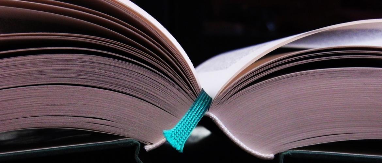 La sélection littéraire du mois : décembre 2020