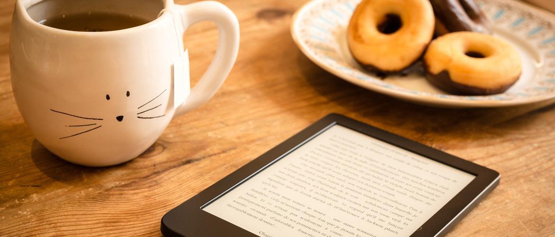 5 sites pour télécharger des eBooks gratuitement